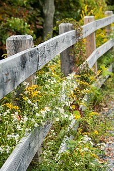 fence-506602__340.jpg